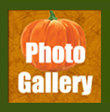 Petaluma Pumpkin Patch Photo Gallery