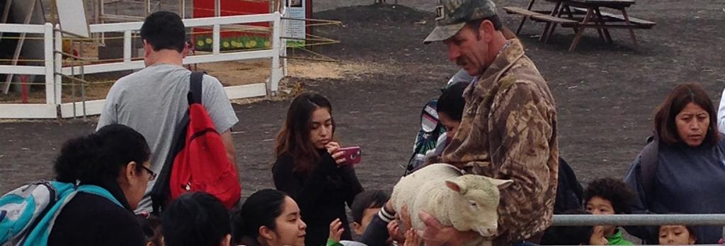 Petaluma Pumpkin School Field Trips