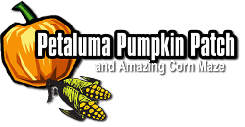 | Petaluma Pumpkin Patch and Amazing Corn Maze 707-778-3132