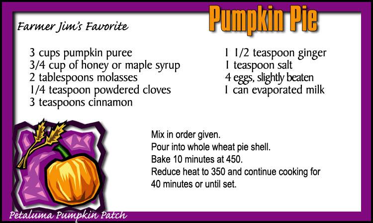 Petaluma Pumpkin Patch Pumpkin Pie Recipe