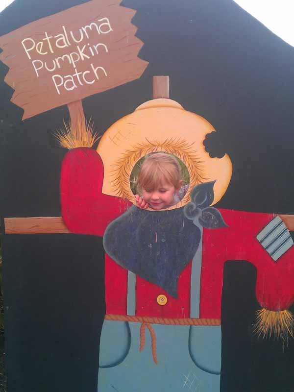 Petaluma Pumpkin Patch Kid Fun