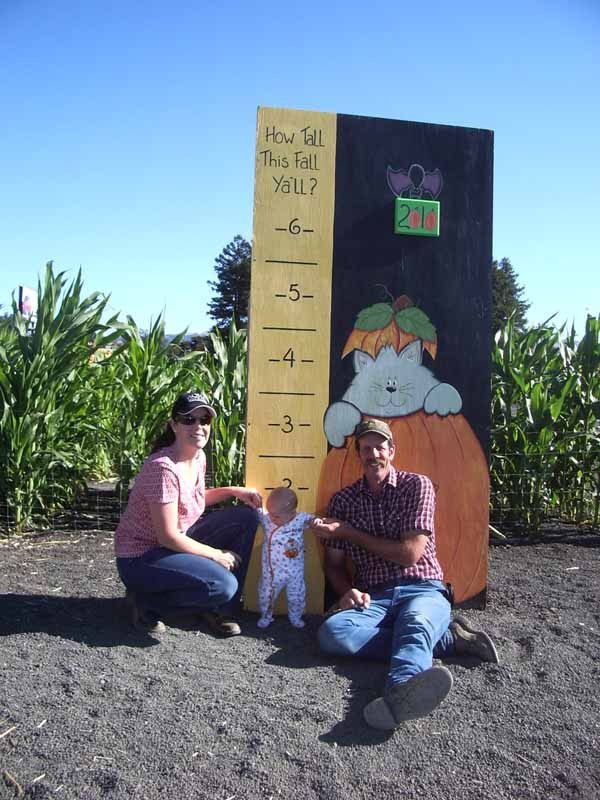 Petaluma Pumpkin Patch Size Chart