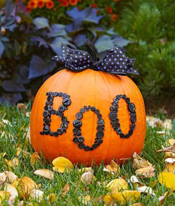 Halloween at Petaluma Pumpkin Patch